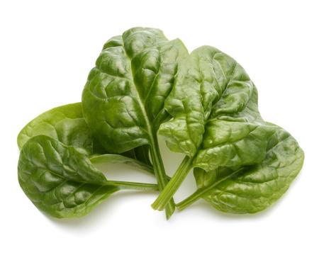 Baby-Spinat Blätter auf weißem Hintergrund Ausschnitt