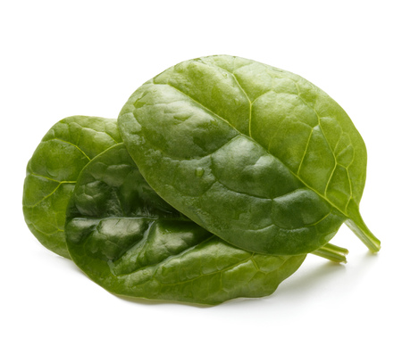 fresh spinach: Baby spinach leaves isolated on white background cutout