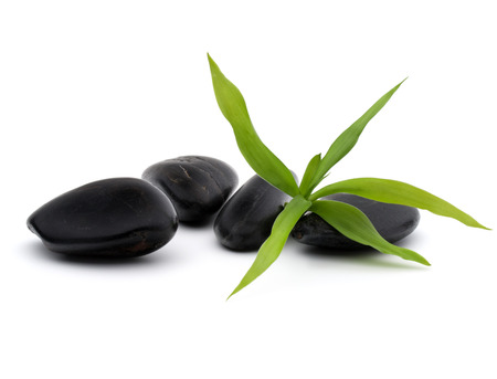 shinning leaves: Zen pebbles. Stone spa and healthcare concept.