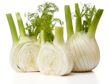 Fresh fennel bulb isolated on white background close up Stok Fotoğraf