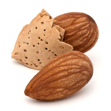 shelled: Almond nut in shell and shelled isolated on white background close up