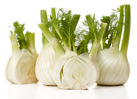 Fresh fennel bulb isolated on white background close up Banque d'images