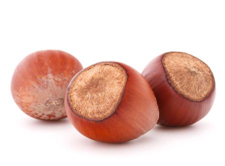 filbert: hazelnut or filbert nut isolated on white background cutout