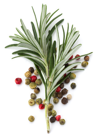 peppercorn: rosemary herb spice leaves and peppercorns isolated on white background cutout