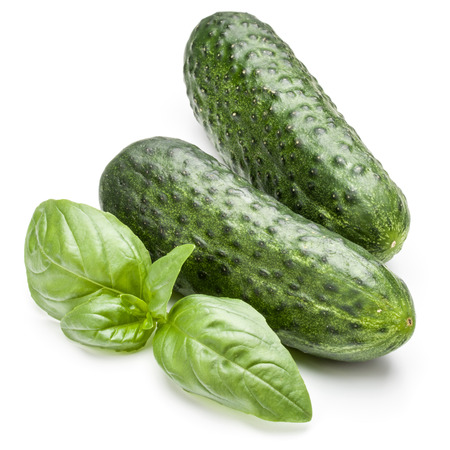 Cucumber vegetable and basil leaves isolated on white background cutout Stock Photo