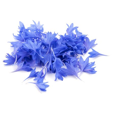 Blue Cornflower Herb or bachelor button flower petals isolated on white background cutout Stock Photo