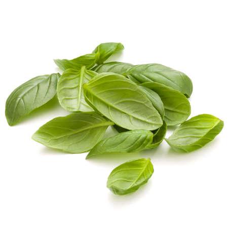 Doux basilic herbe feuilles poignée isolé sur fond blanc closeup Banque d'images - 83770963
