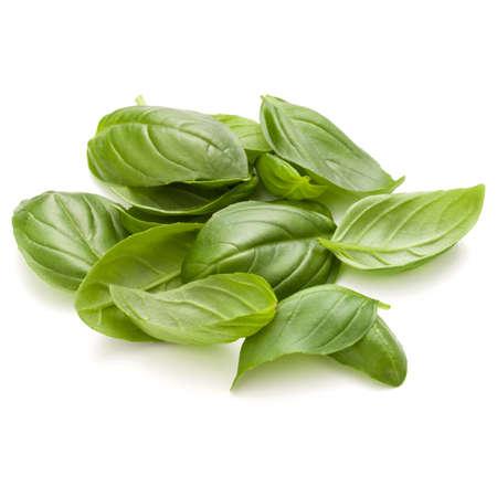Doux basilic herbe feuilles poignée isolé sur fond blanc closeup Banque d'images - 84182721