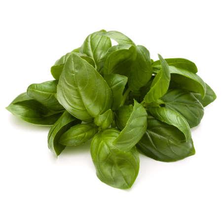Doux basilic herbes tas tas isolé sur fond blanc Banque d'images - 84183325