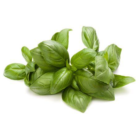 Doux basilic herbes tas tas isolé sur fond blanc Banque d'images - 86314095