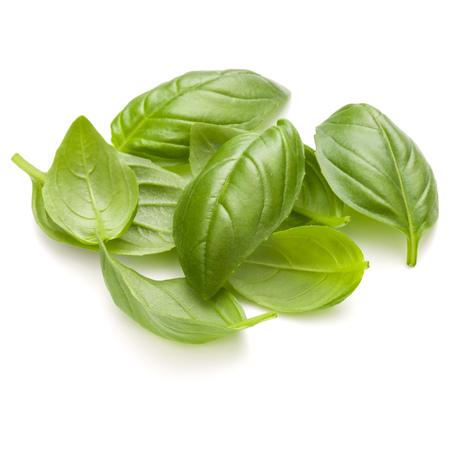 Doux basilic herbe feuilles poignée isolé sur fond blanc closeup Banque d'images - 86314478