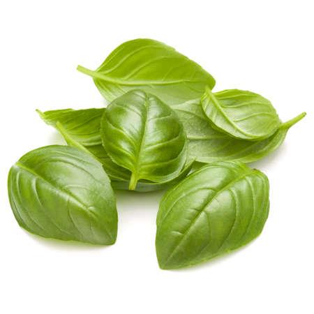 Doux basilic herbe feuilles poignée isolé sur fond blanc closeup Banque d'images - 86314993