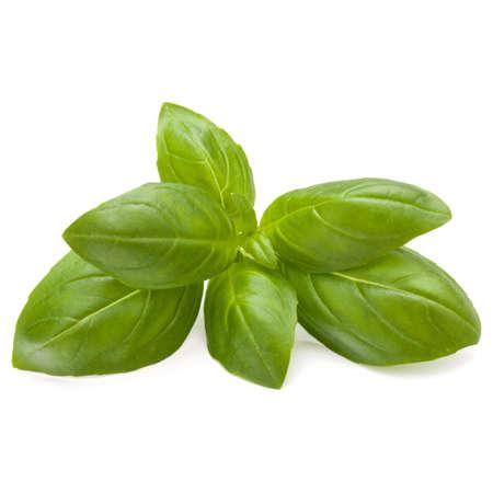 Doux basilic herbes feuilles isolé sur fond blanc closeup Banque d'images - 86315056
