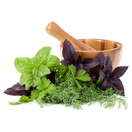 Fresh spices and herbs and wooden mortar isolated on white background cutout. Sweet basil, red basil leaves, dill and parsley. Stock Photo