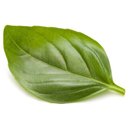 Doux basilic herbes feuilles isolé sur fond blanc closeup Banque d'images - 86315101