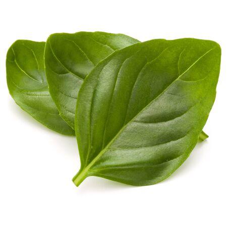 Doux basilic herbes feuilles isolé sur fond blanc closeup Banque d'images - 87608746