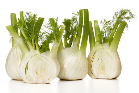 Fresh fennel bulb isolated on white background close up 스톡 콘텐츠