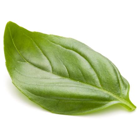 Doux basilic herbes feuilles isolé sur fond blanc closeup Banque d'images - 87609271