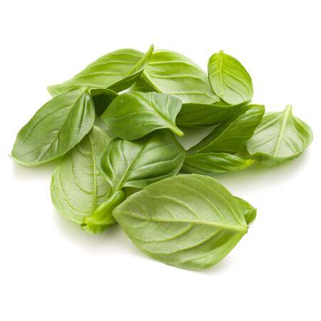 Douce herbe feuilles de basilic poignée isolé sur fond blanc closeup Banque d'images - 87609616