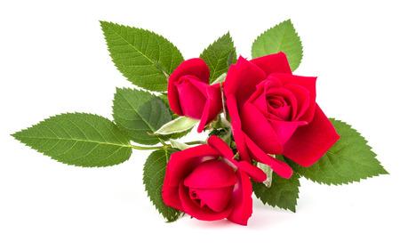 Bouquet di fiori rosa rossa isolato su sfondo bianco Archivio Fotografico - 88437519