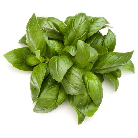 Doux basilic herbes tas tas isolé sur fond blanc Banque d'images - 88427319