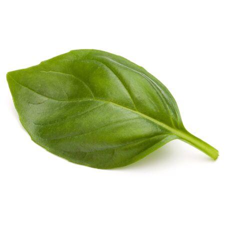 Douce herbe feuilles de basilic isolé sur fond blanc closeup Banque d'images - 88716487