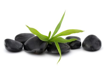 Zen pebbles. Stone spa and healthcare concept.