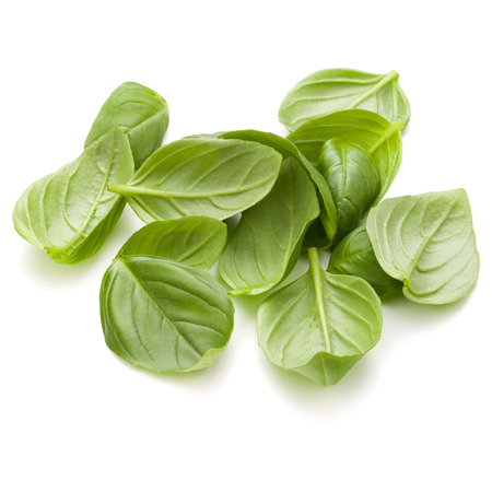 Sweet basil herb leaves handful isolated on white background closeup Banque d'images - 100356280