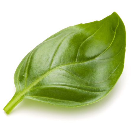 Sweet basil herb leaves isolated on white background closeup Banque d'images - 107937612