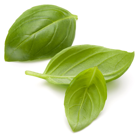 Sweet basil herb leaves isolated on white background closeup Banque d'images - 107937384