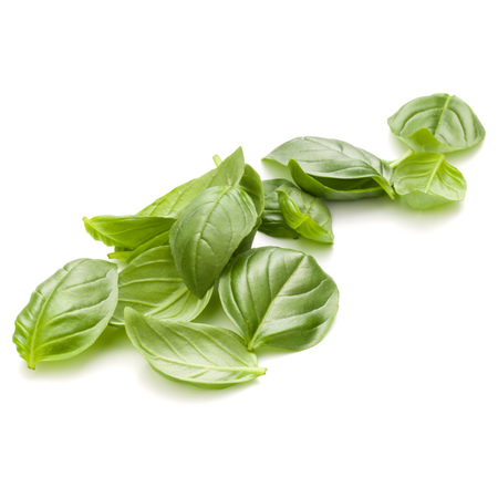 Sweet basil herb leaves handful isolated on white background closeup Banque d'images - 107936026