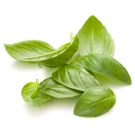 Sweet basil herb leaves handful isolated on white background closeup Banque d'images - 107935604