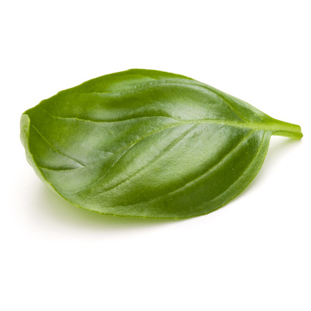 Sweet basil herb leaves isolated on white background closeup Banque d'images - 107584266