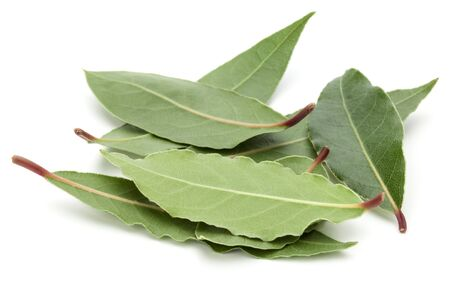 Aromatic bay leaves isolated on white background cutout 版權商用圖片