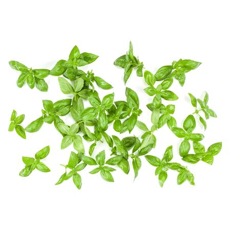 Sweet Genovese basil leaves background arrangement isolated on white. Top view. Stockfoto