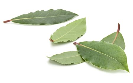 Aromatic bay leaves isolated on white background cutout 版權商用圖片 - 130163466