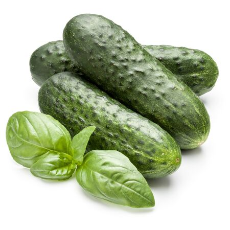 Cucumber vegetable and basil leaves isolated on white background cutout Banco de Imagens - 130163677