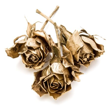 Three gold roses isolated on white background cutout. Golden dried flower heads, romance concept.