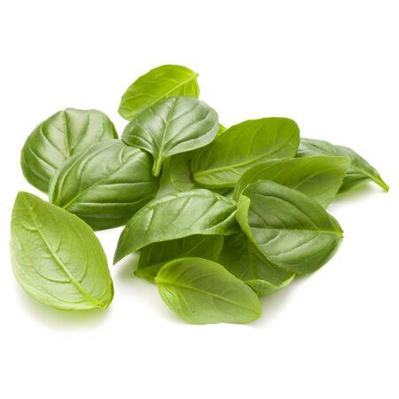 Zoete basilicum kruid bladeren handvol geïsoleerd op een witte achtergrond closeup Stockfoto