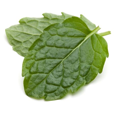 Peppermint herb isolated on white background cutout. Mint leaves. Stock fotó - 130164363