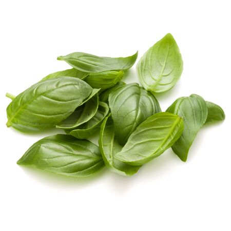 Sweet basil herb leaves handful isolated on white background closeup Stock Photo - 132913698