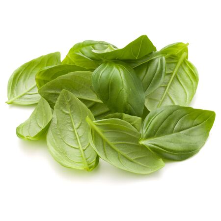 Sweet basil herb leaves handful isolated on white background closeup Stock Photo - 132913116