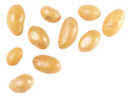 Potato isolated on white background with copy space for your text. Top view. Flat lay pattern. Potatoes in air, without shadow. Standard-Bild