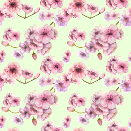 Seamless pattern. Cherry color. Sakura branch with pink flowers. Image of spring. Frame. Watercolor illustration. Design element
