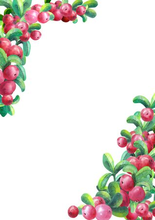 Ripe berry cowberry on white background is isolated. The frame is of vertical orientation. Watercolor illustration