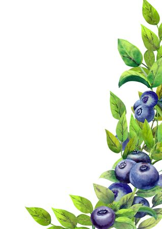 Frame with ripe blueberries on white isolated background. Vertical orientation. Watercolor illustration