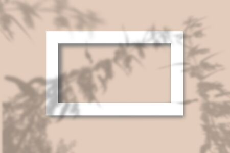 Top view of leaf shade on sand color background. Flat style. A piece of paper on a background. Mockup with the imposition of plant shadows. Natural light casts a shadow from above. The scene of an exotic plant from the window.