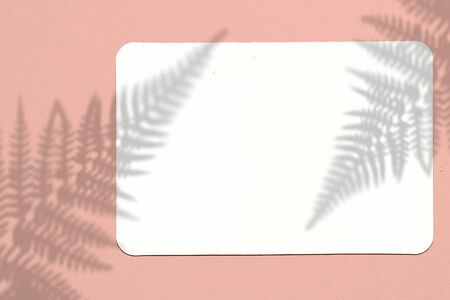 A piece of paper on a blue background. Layout with the imposition of plant shadows. Natural light casts a shadow from above. The scene of an exotic plant from the window