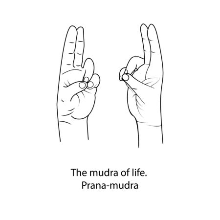 Fingers yoga is the mudra of life. Outline black and white drawing on white isolated background. Vector illustration.