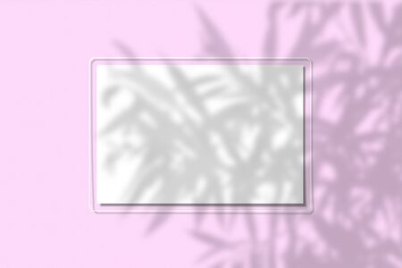 A piece of paper on a pink background. Layout with the imposition of plant shadows. Natural light casts a shadow from above. The scene of an exotic plant from the window Banco de Imagens
